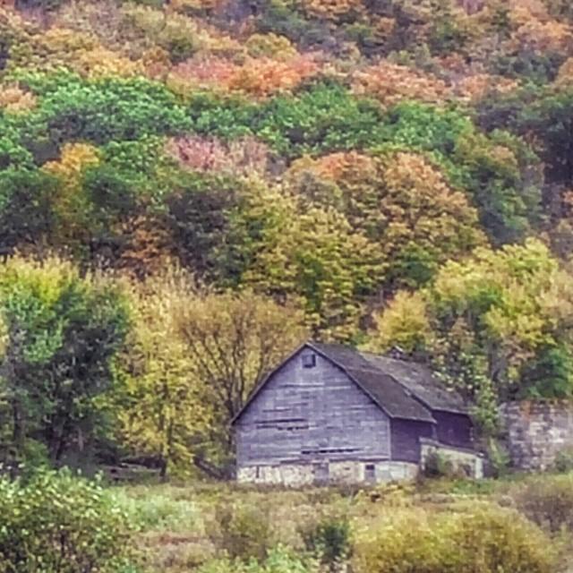GrainyHouse
